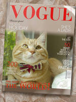 On Vogue by lucytherescuedcat