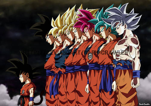 Son Goku Transformations
