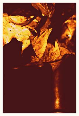 gold polish autumn