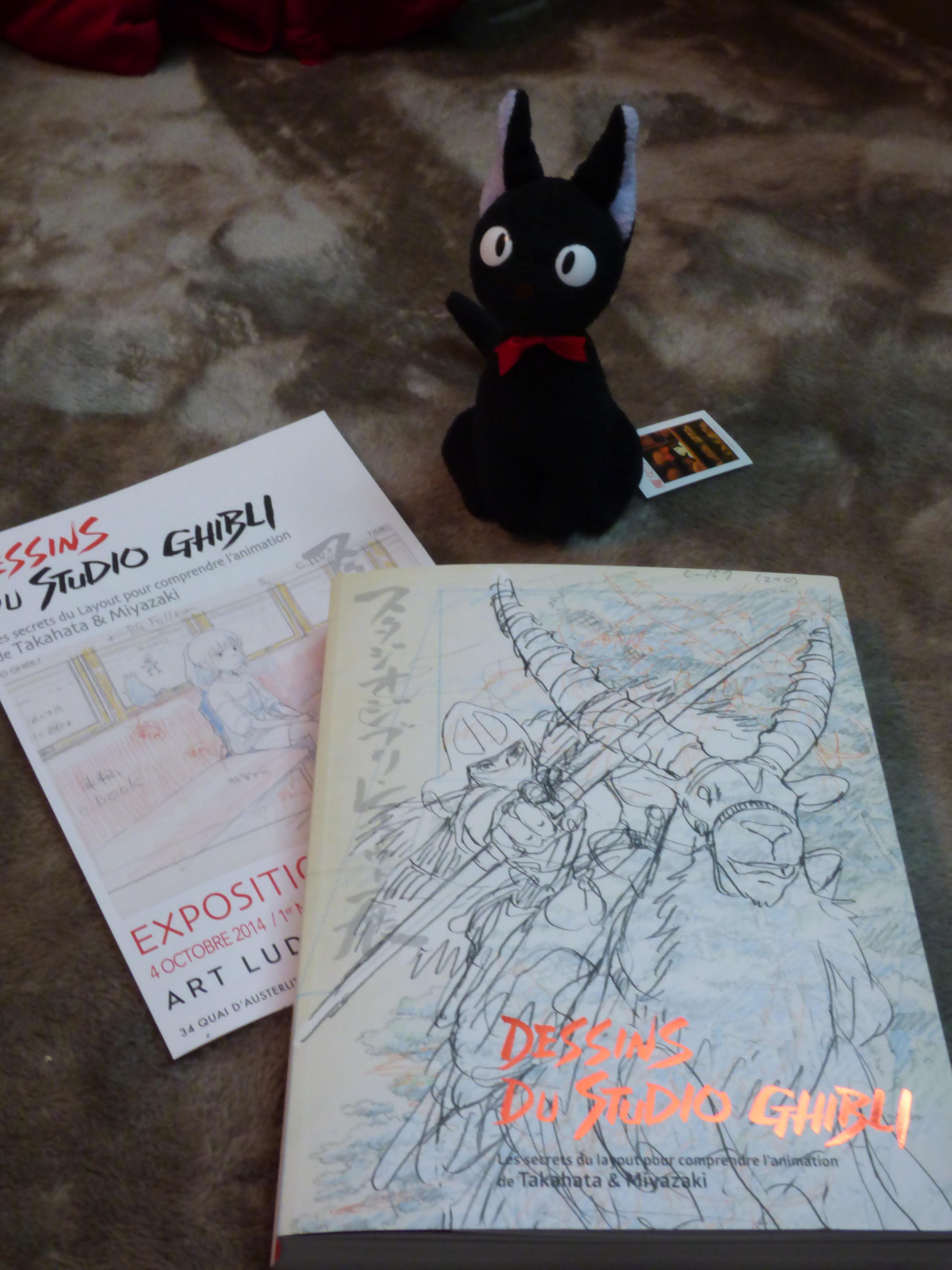 Souvenirs from Miyazaki exposition by YumeNox
