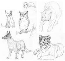 Animals by inu-sushi