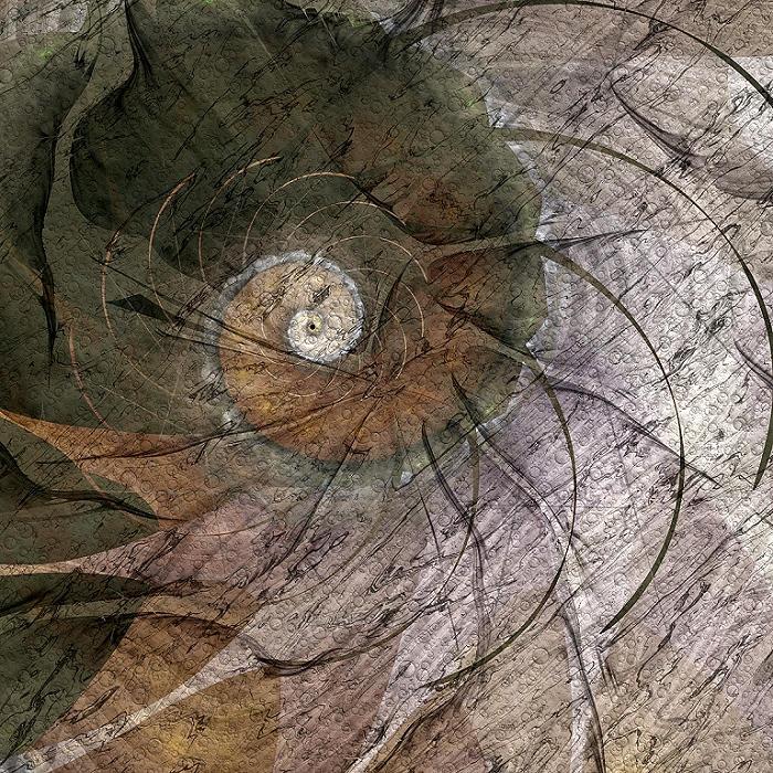Growth Rings by DigitalPainters