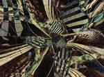 Maelstrom by DigitalPainters