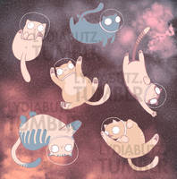 SPACE CATS: CATS IN SPACE by Girl-on-the-Moon