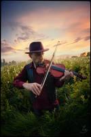 Gipsy Fiddler by Thaess
