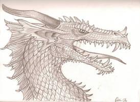 Western Dragon by Kaaziel
