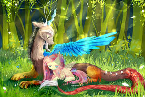 MLP : Discord and Fluttershy by AquaGalaxy
