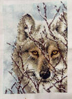 Wolf Cross Stitch by DragonChaser123