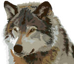 Grey Wolf Cross Stitch Pattern