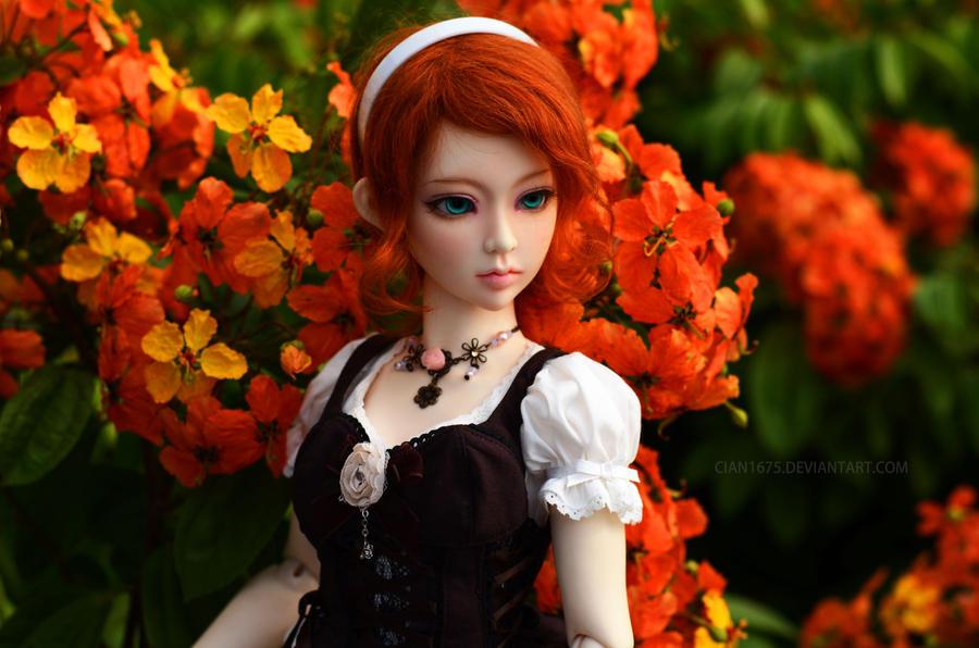 Alice by cian1675