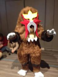 Ohayocon 2015  Pokemon