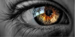 Hazel-Eyes by reedgriffith