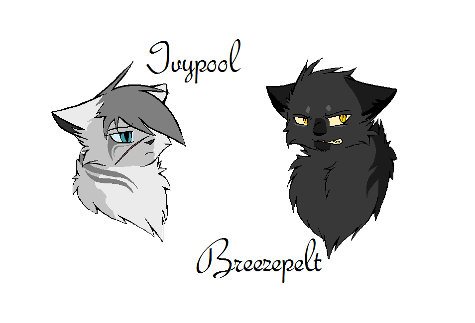 Warrior Cats Hollyleaf And Breezepelt Fanfiction Breezepelt And Ivypool...