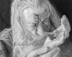 Gandalf by bdank