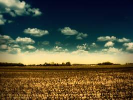 farmland by stevenfields