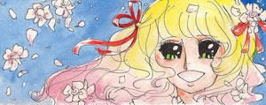 Bookmark - Lady Rose