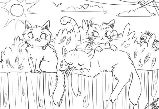Colour the cats