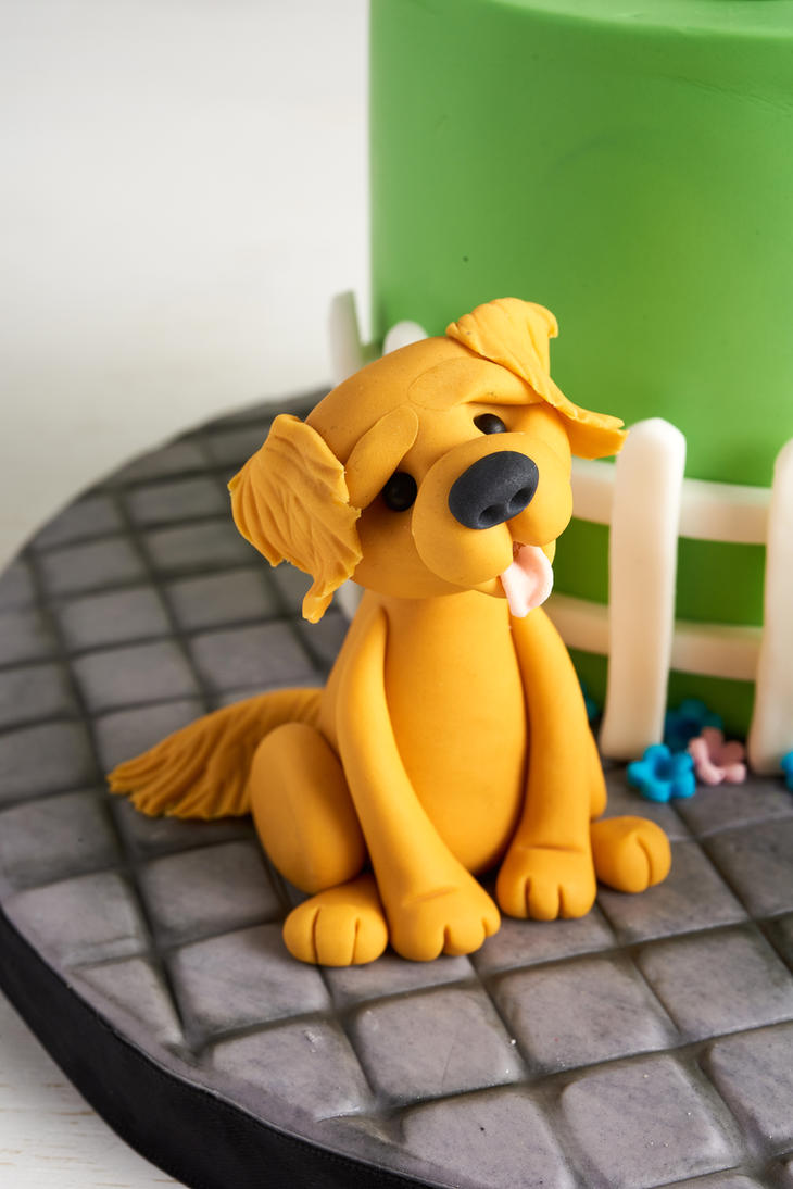 Adorable Dog by Naera