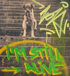 Still Alive by jois85