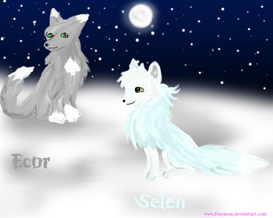 Selen and Ecor the foxes by Foxymon