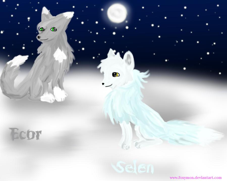 Selen and Ecor the foxes by Foxymon