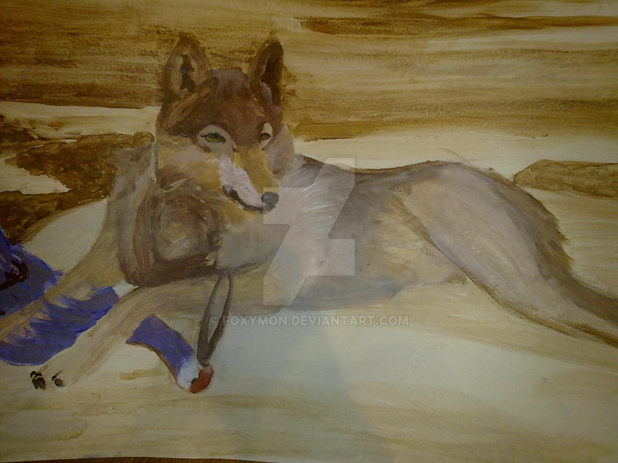 The wolf by Foxymon