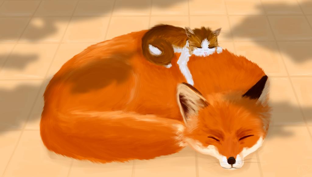 Nap time by Foxymon