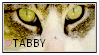 Stamp: Tabby Cat by 050294