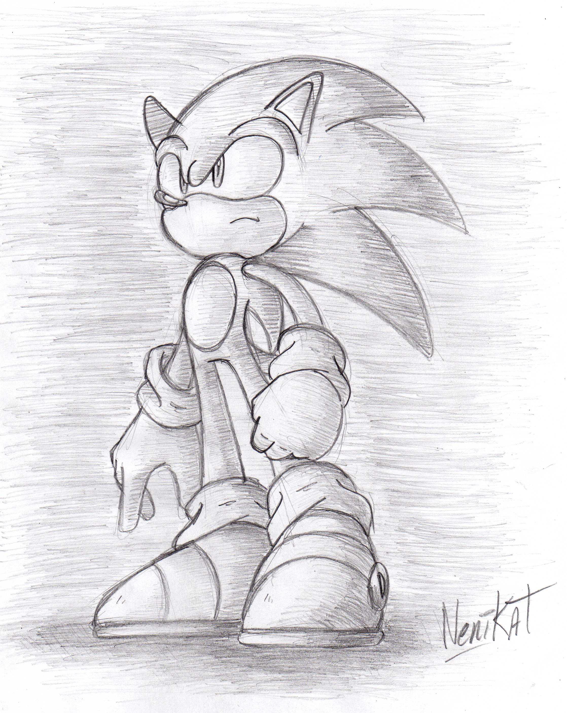 Sonic hasta las nubes  Mi galeria C  Museo de Fanaticos