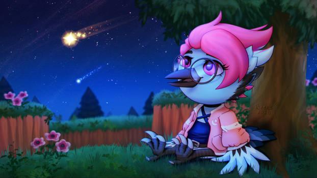Shooting stars night