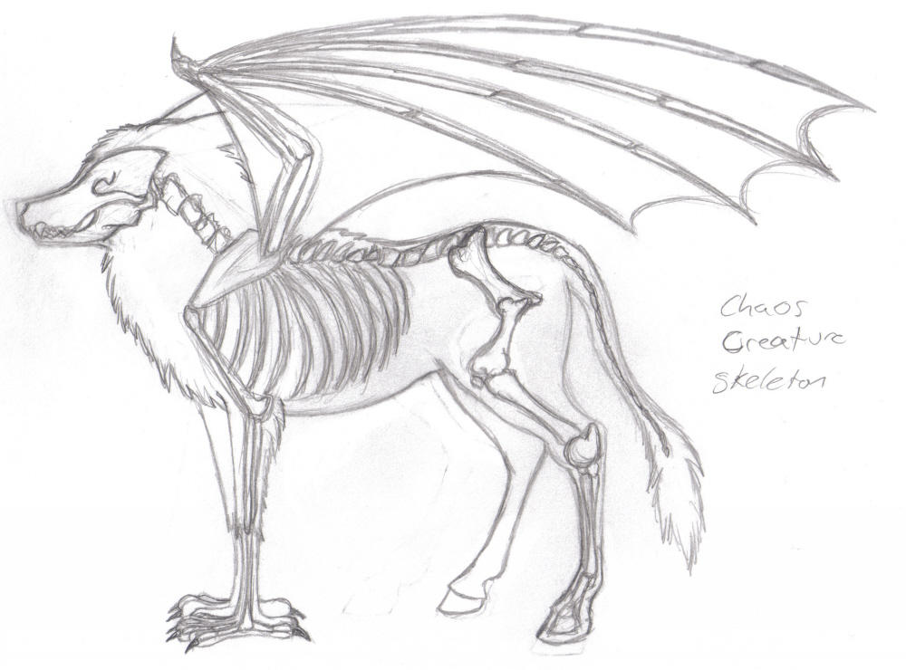 C.C. Anatomy-skeleton by Howling-Wolf on DeviantArt