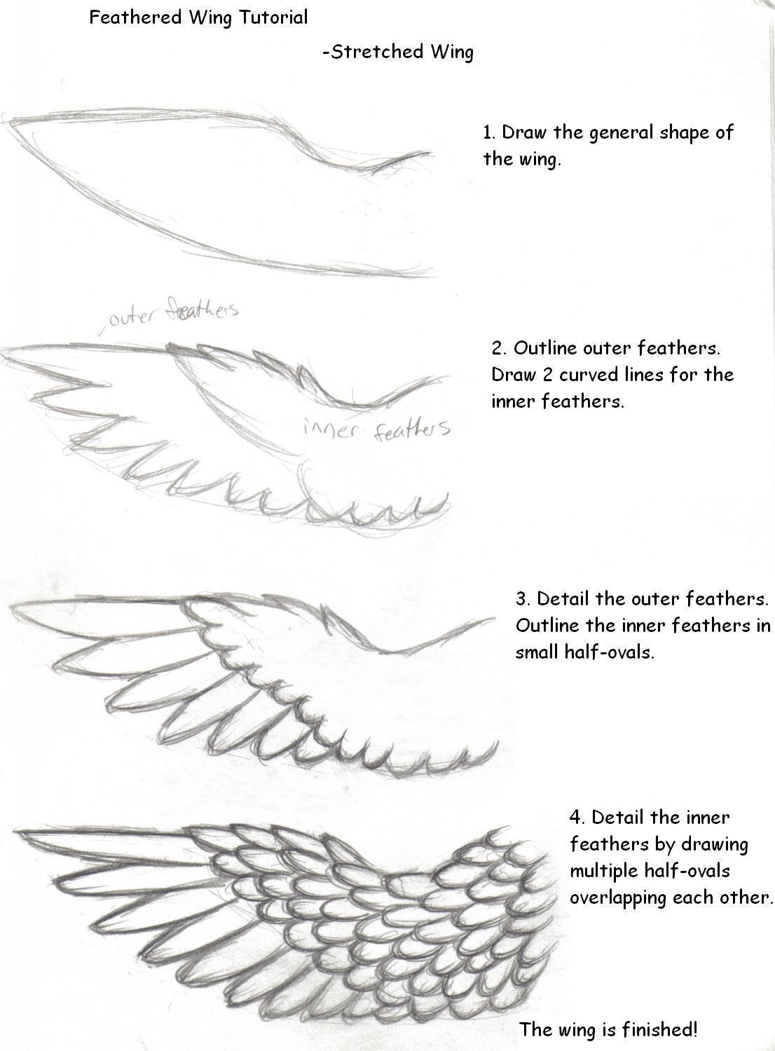 Wing Tutorial By Howling-Wolf On DeviantArt