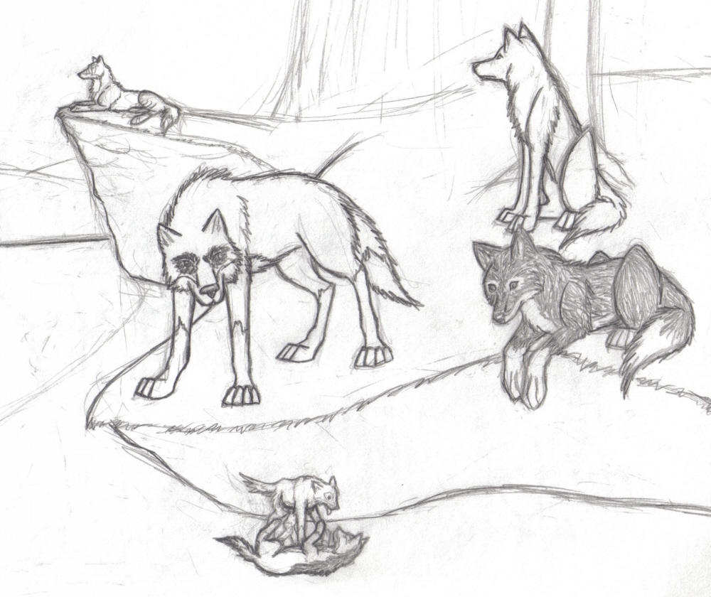 Wolf Pack Howling Drawing