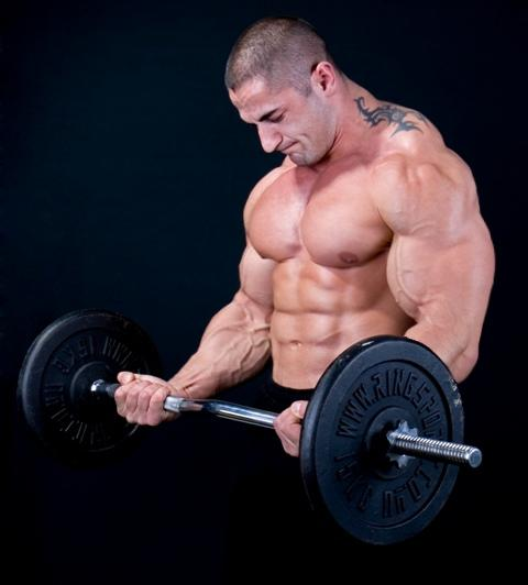 HOW TO GET STRONGER BY HALVING YOUR GYM TIME HOW TO GET STRONGER BY HALVING YOUR GYM TIME new photo