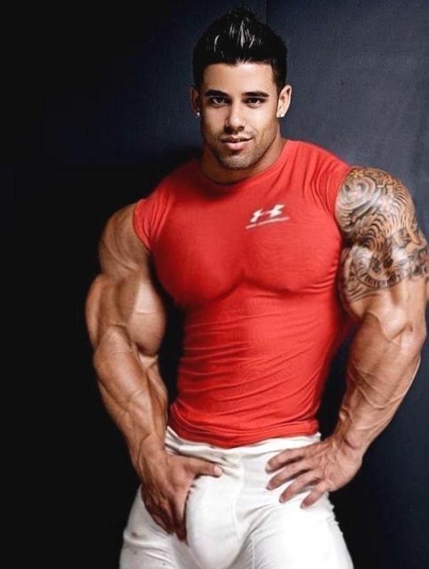 Santi Muscle Morpher...