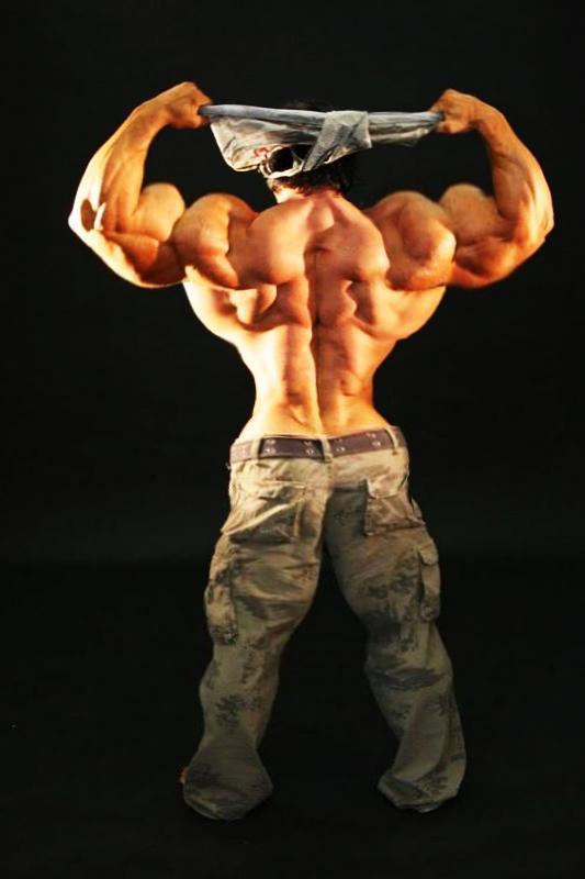 Muscle Back - DPhenix Tribute by n-o-n-a-m-e