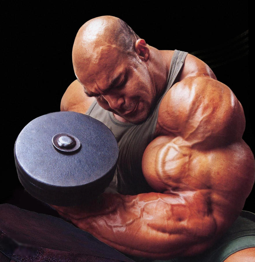 Building Bigger Muscles Workouts