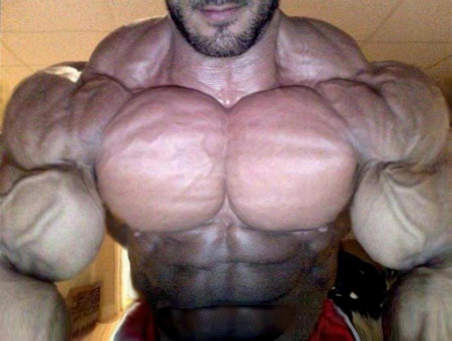 Gay muscle men flexing