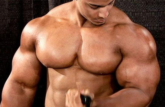 Muscle Building Workout Routines Without Weights