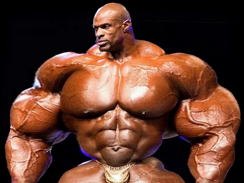 Heavyweight Muscle by n-o-n-a-m-e on DeviantArt