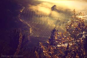 Mystified by linda-Bee