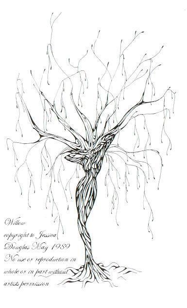 Willow by JessicaMDouglas