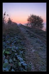 Winter Day - Sunrise on Zator