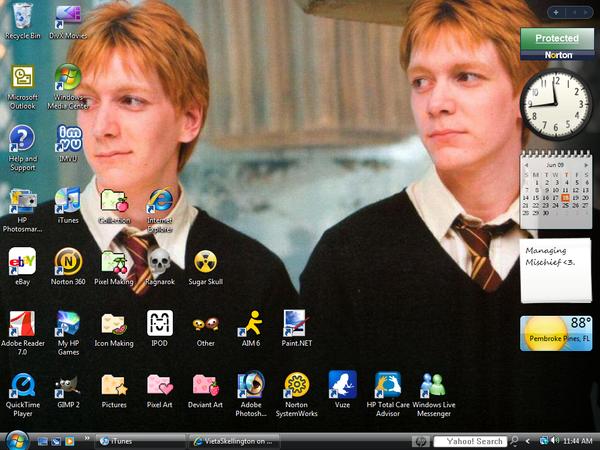 Weasley Twins Desktop by VietaSkellington