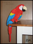 3D Origami Scarlet Macaw
