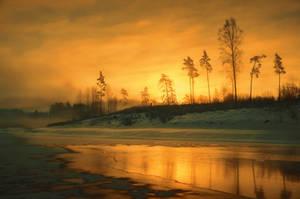 Golden by HendrikMandla