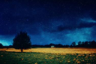 Spring dream by HendrikMandla