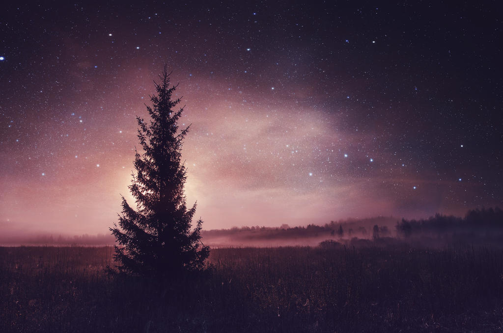Lost in the night by HendrikMandla