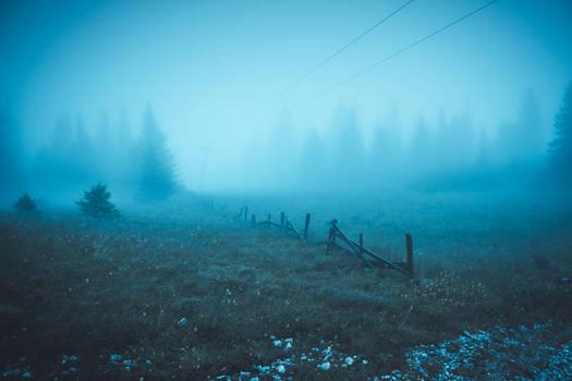 Alpine Morning