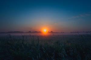 Sun on earth